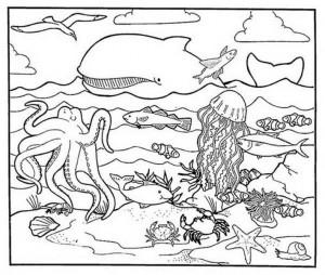 A-Healty-Habitat-of-Sea-Animal-Coloring-Page (Kopyala)