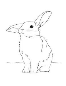 cute-bunny-coloring-pages-2 (Kopyala)