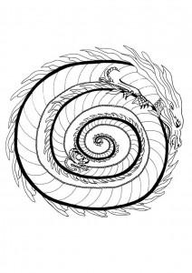 fire-dragon-mandala-source_56s