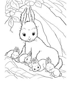 rabbit-family-coloring-page (Kopyala)