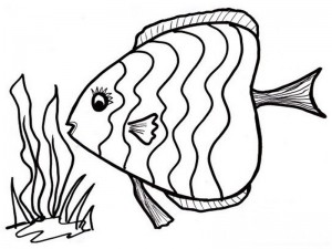 realistic-tropical-fish-coloring-pages-ocean-fish-coloring-pages-realistic-239173 (Kopyala)