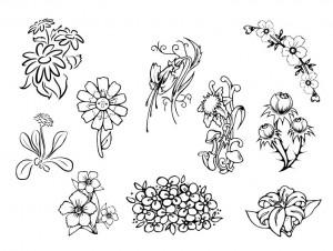 çiçek_bahçesi_kesme