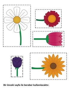 çiçekleri_sıralama