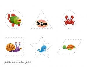 deniz_canlıları_matematik