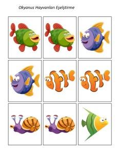 deniz_hayvanları_