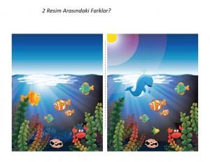 deniz_hayvanları_farkı_bulma