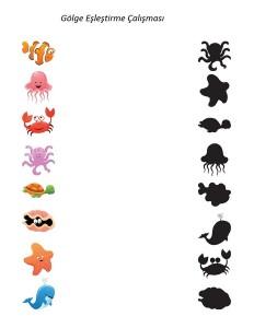 deniz_hayvanları_gölge_eşleştiröme