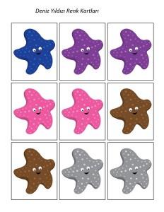 deniz_hayvanları_yıldız