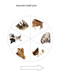hayvanlar_grafik_çarkı