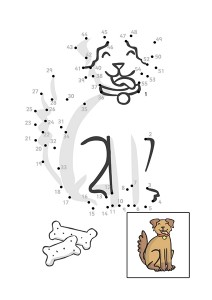 köpek_sayı_birleştirme