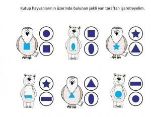 kutup_hayvanları_şekil öğretimi