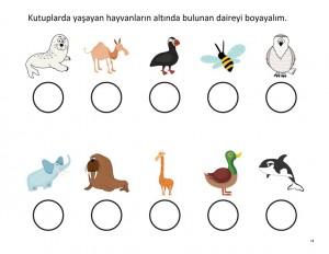 kutup_hayvanları_bulma
