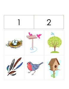 okul_öncesi_kuş_aktiviteler