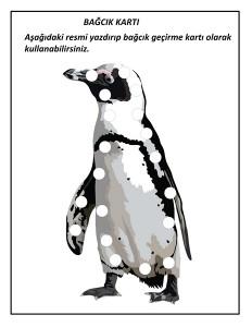 okul_öncesi_penguen_bağcık_kartı