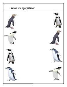 okul_öncesi_penguen_eşleştirme (2)