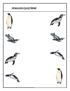 okul_öncesi_penguen_eşleştirme