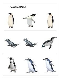 okul_öncesi_penguen_resimleri