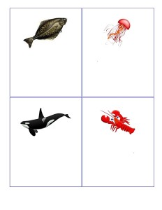 hayvanlarla_oyun