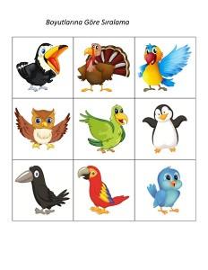 kuş_boyut_sıralama