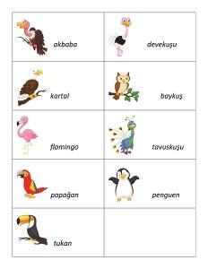kuşlar_kelime_kartları