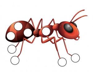 okul_öncesi_böcek_