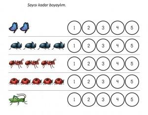 okul_öncesi_böcek_sayılar