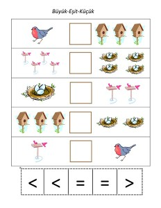 okul_öncesi_kuş_küçük_büyük