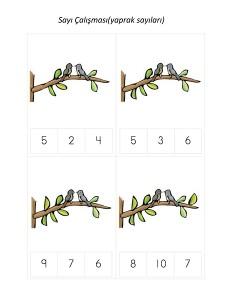 okul_öncesi_kuş_sayı_çalışması
