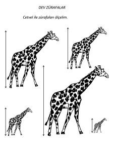 okul_öncesi_zürafa_ölçme