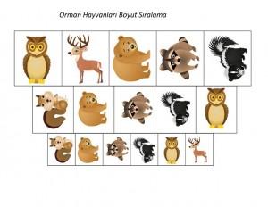 orman_hayvanları_boyut_çalışması