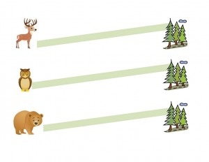 orman_hayvanları_kesme_çalışması