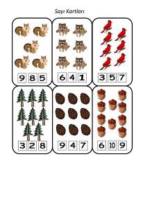 orman_hayvanları_sayı_çalışması