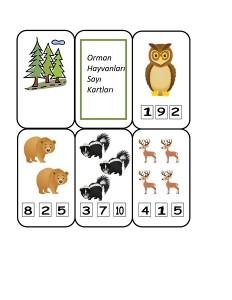 orman_hayvanları_sayı_etkinlikler