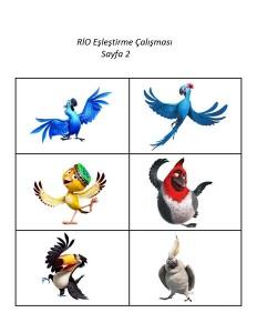 rio_animasyon_film_hafıza_kartları