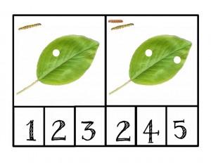 tırtıl_ile_sayı_etkinliği