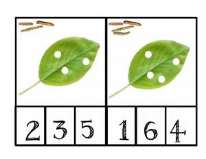 tırtıl_sayı_çalışmaları
