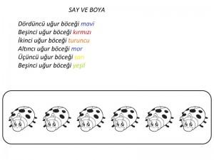 uğur_böceği_say_ve_boya