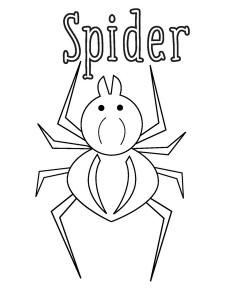 boyama_örümcek