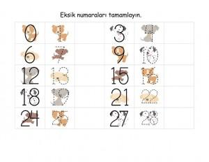 okul_öncesi_sayı_çalışmaları