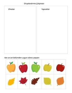 sonbahar_konulu_gruplandırma