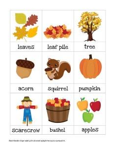 sonbahar_konulu_ingilizce_kelime_kartları