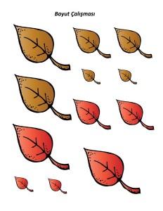 yapraklar_boyut_çalışması