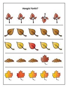 yapraklar_hangisi_farklı