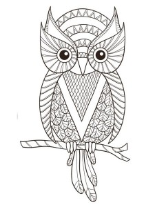 Just_Color_Owls
