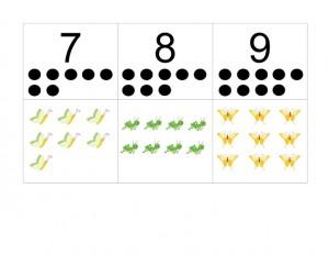 böcek_sayılar
