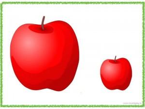 büyük_küçük_etkinliği_elma