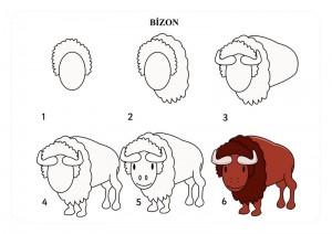 bizon_nasıl_çizilir