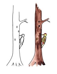 boyama_ağaçkakan
