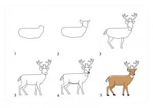 geyik_nasıl_çizilir