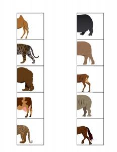hayvanlar_yarısını_bul_eşleştirme